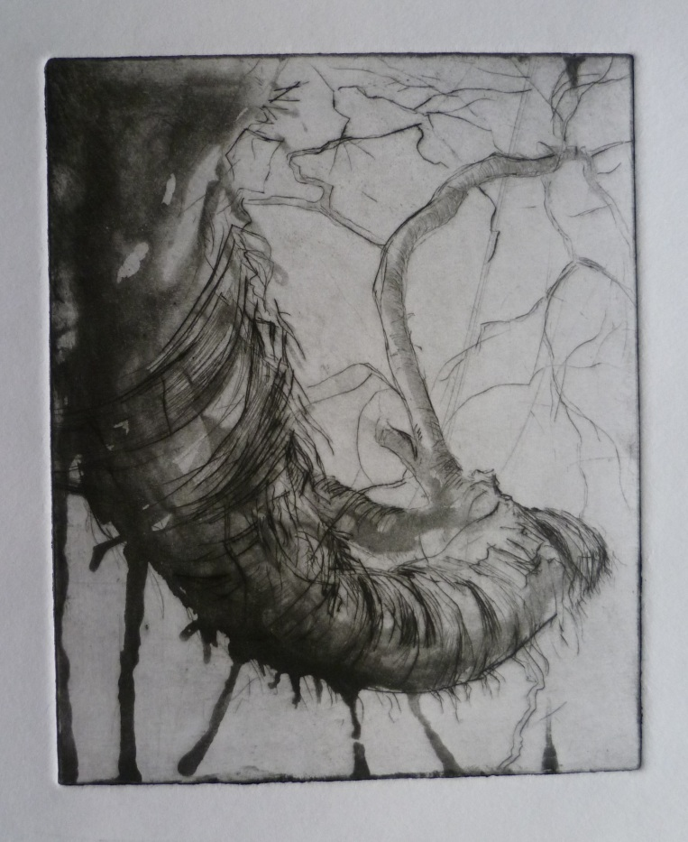 Drypoint with spitbite on copper print 2014