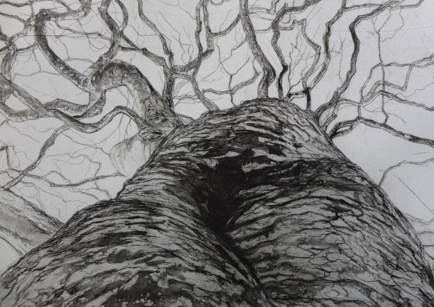 Carved Upwards detail