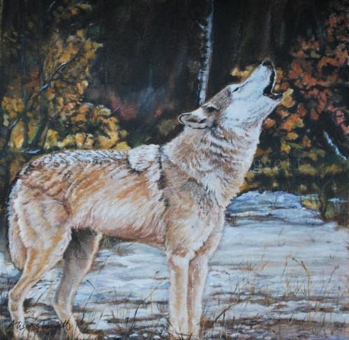 WolfCommison.2