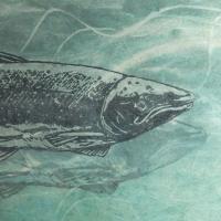 Pilgrimage , Salmon