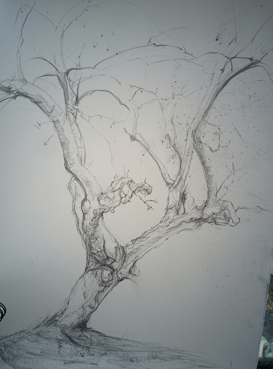 Drawing trees again