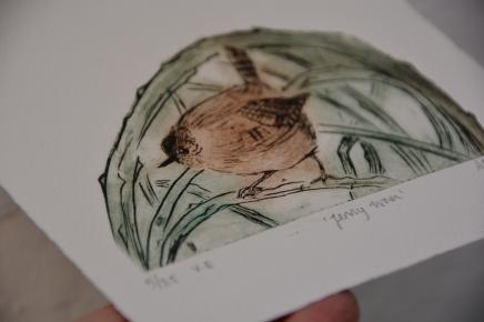 Jenny wren collagraph print alison sloggett
