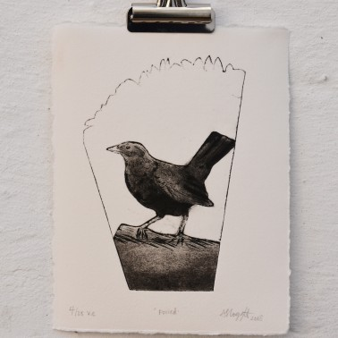 Poised Blackbird collagraph.
